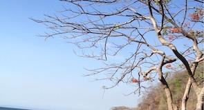 旗魚灣海灘