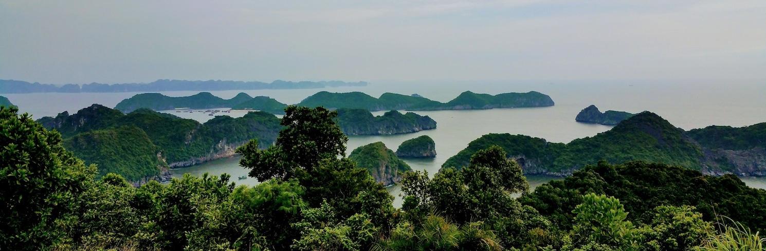 Χάι Φονγκ, Βιετνάμ