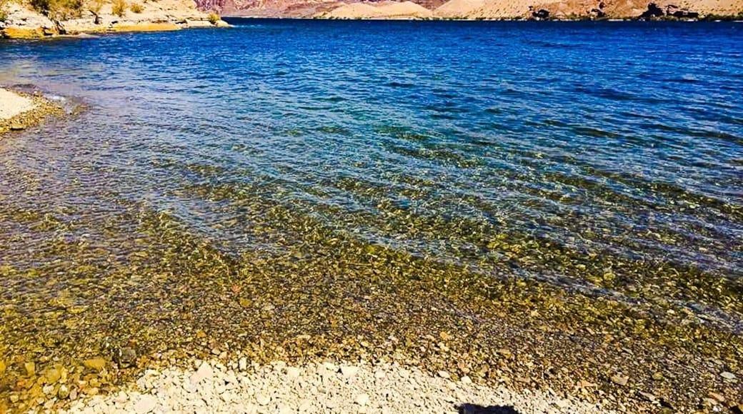 Foto av Desert Adventurist