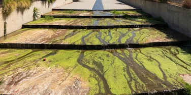 The Los Angeles River, such iconic scenes in so many movies, I had to go and explore and see it for myself.  Verdugo Washis a 9.4-mile-long