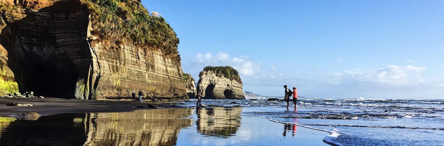 Tongaporutu, Νέα Ζηλανδία