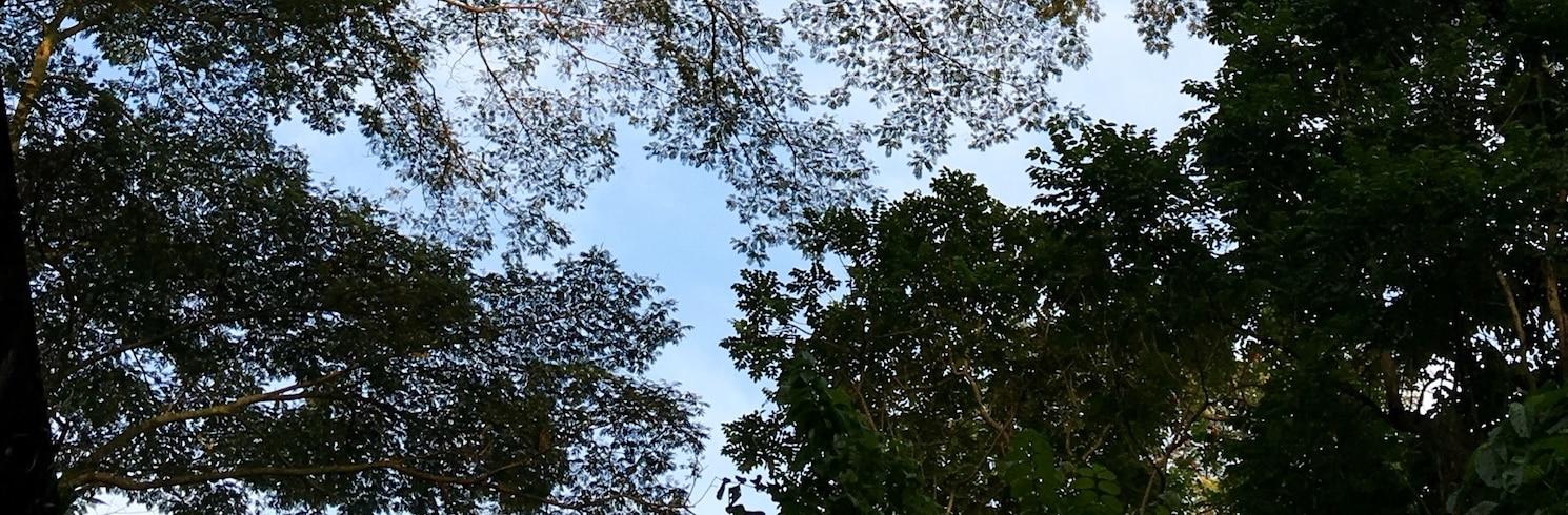 บูกิต ติมา, สิงคโปร์