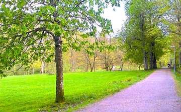 Homo Slottsskogen Mötesplatsen Mobil Log In Escortservice Sverige