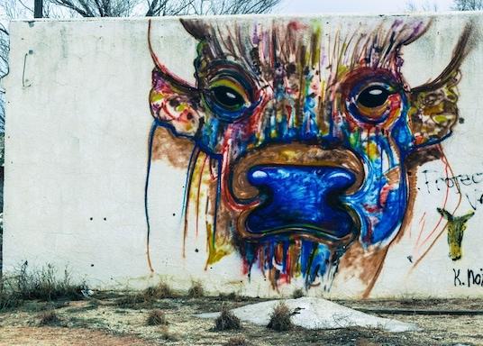 羅斯威爾, 新墨西哥, 美國
