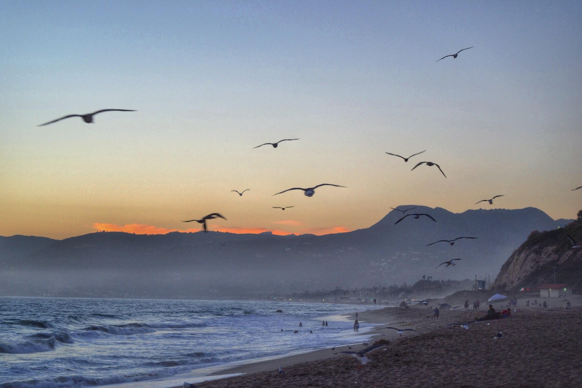 Zuma Beach, Malibu, California, USA