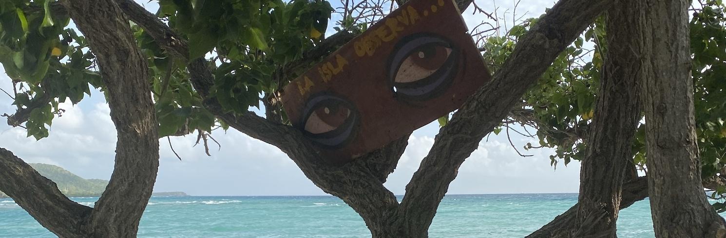 Plajasardinasa I, Puertoriko