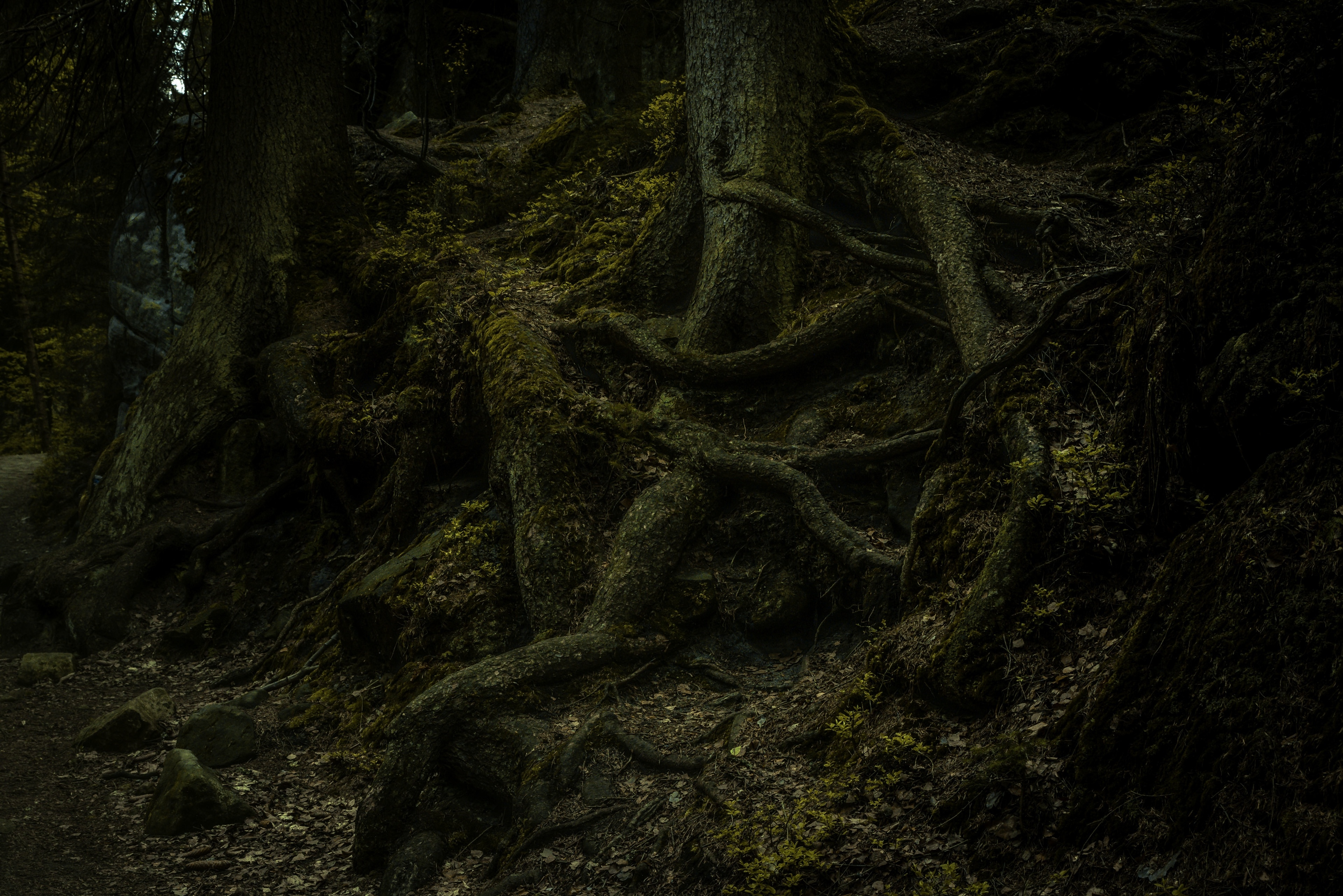 Náchod, Hradec Kralove (region), Tjeckien