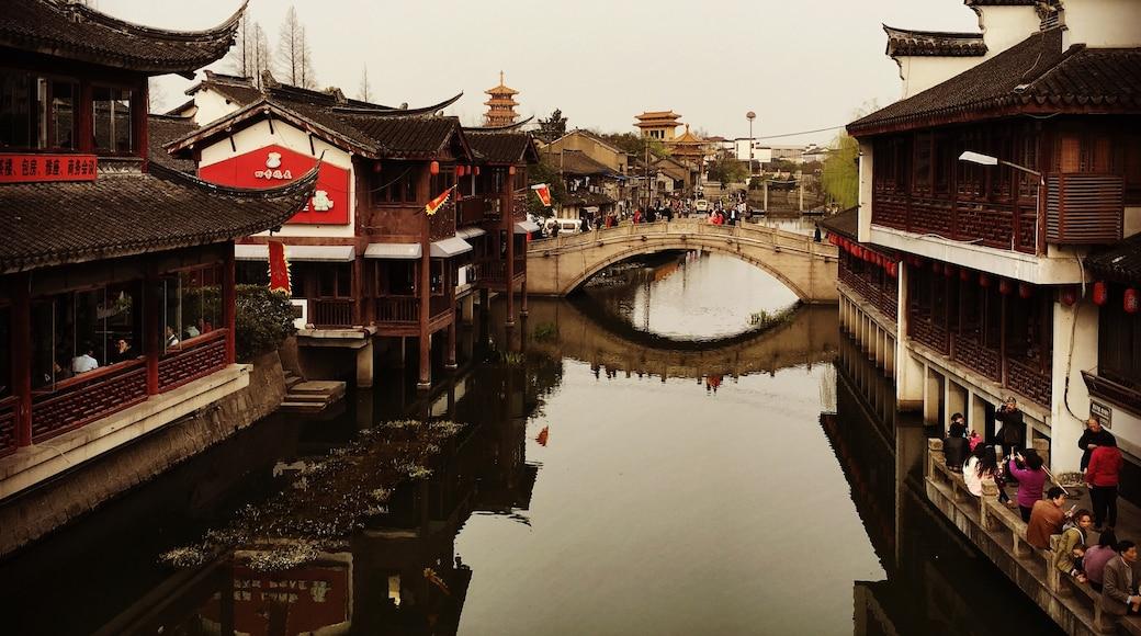 相片由 Chiayu Lin 提供