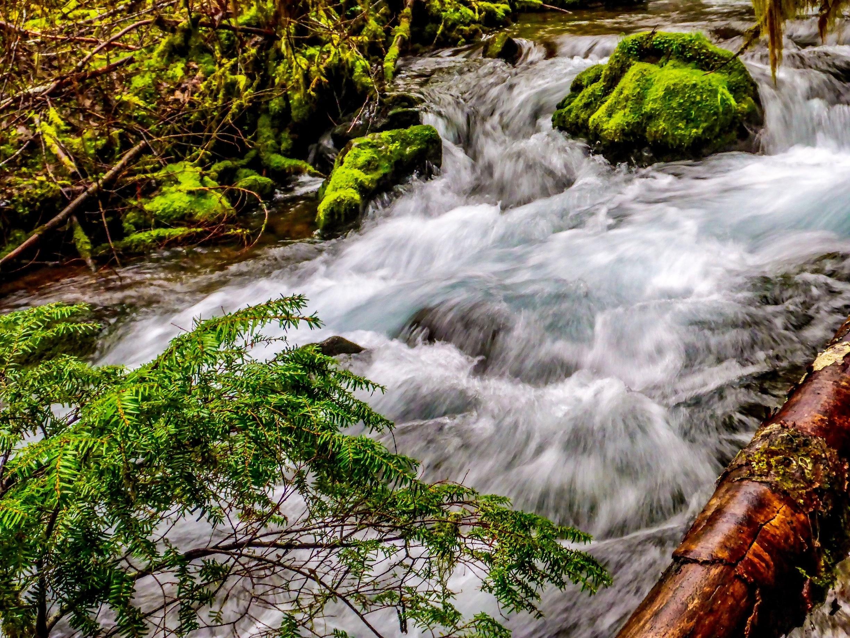 Stevens County, Washington, United States of America