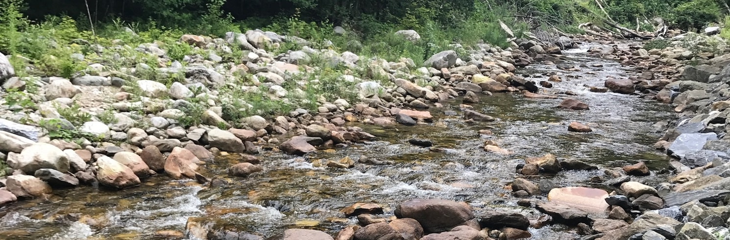 Woodford, Vermont, Birleşik Devletler