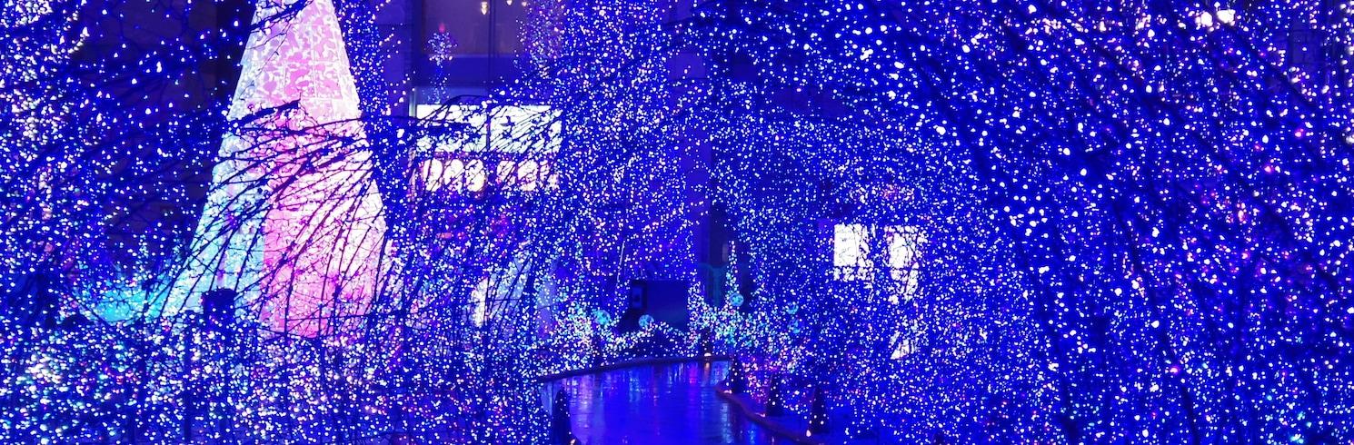 โตเกียว, ญี่ปุ่น
