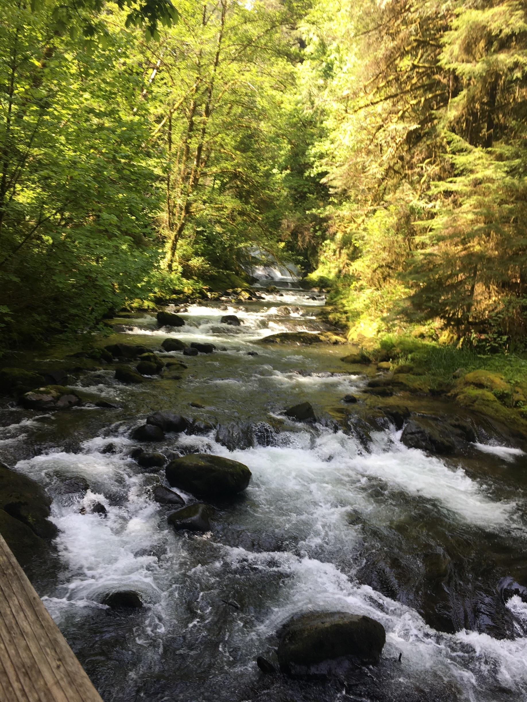Sweet Creek Falls, Mapleton, Oregon, United States of America