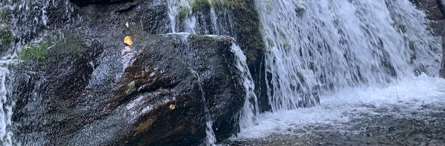 Connellys Springs, Bắc Carolina, Mỹ