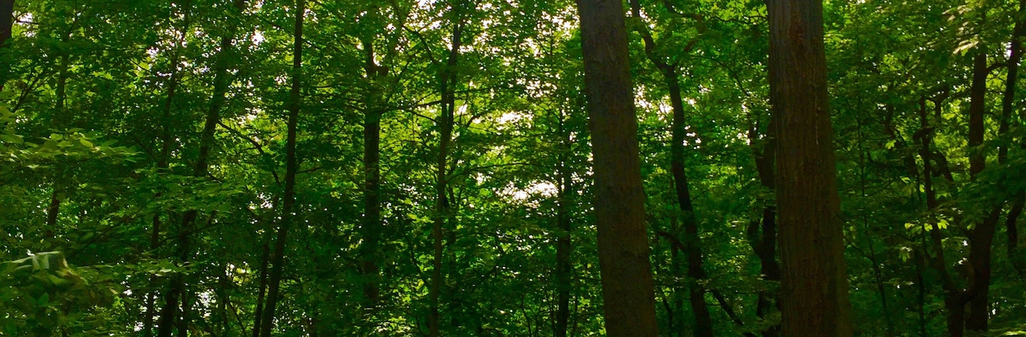 Shorewood-Tower Hills-Harbert, Michigan, USA