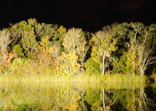 Crystal River, Florida, Estados Unidos