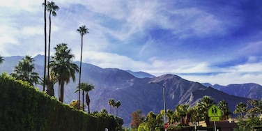 Afternoon run in Palm Springs. #lifeatexpedia