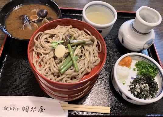 Hatago Oda Onsen, Japan