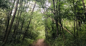 Fort Custer State Recreation Area