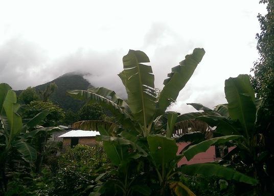 Delices, Dominica