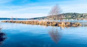 Lake Sammamish delstatspark