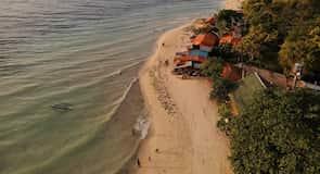 莫阿爾博阿爾白色海灘