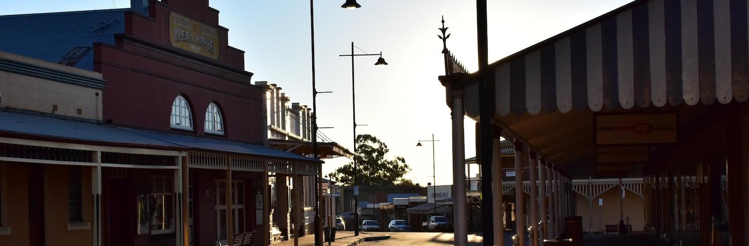 Gulgong, New South Wales, Avustralya