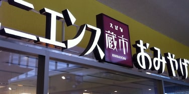 海老名, 神奈川, 日本