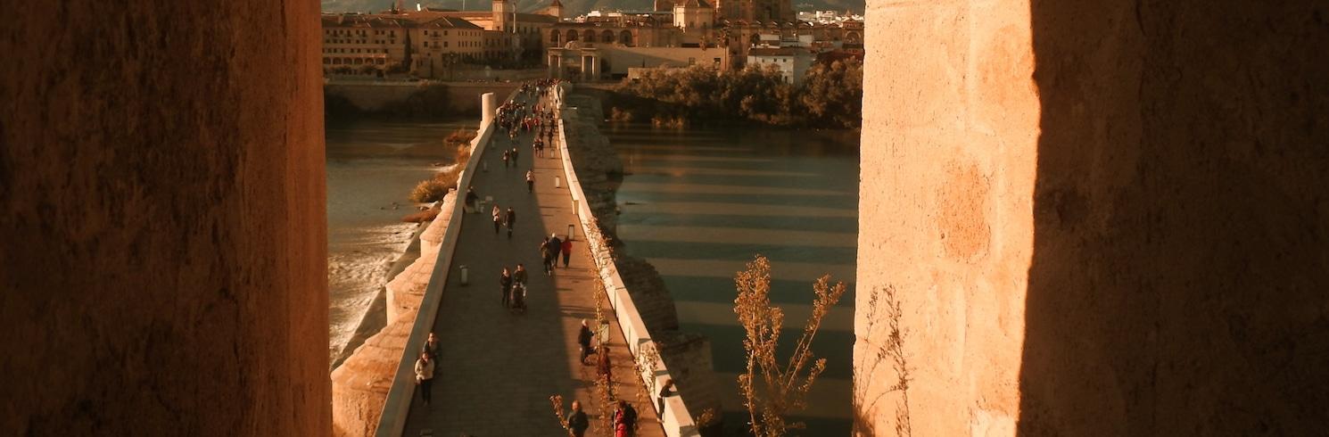 Córdoba, İspanya
