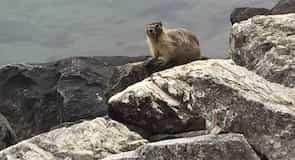 Parque estatal del lago Chelan