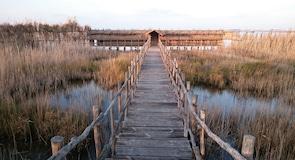 Jazero Lesina