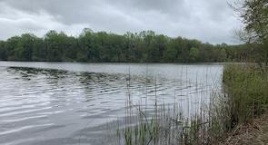 Lums Pond State Park (parks)