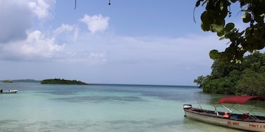 Green Island, Hanover, Jamaïque
