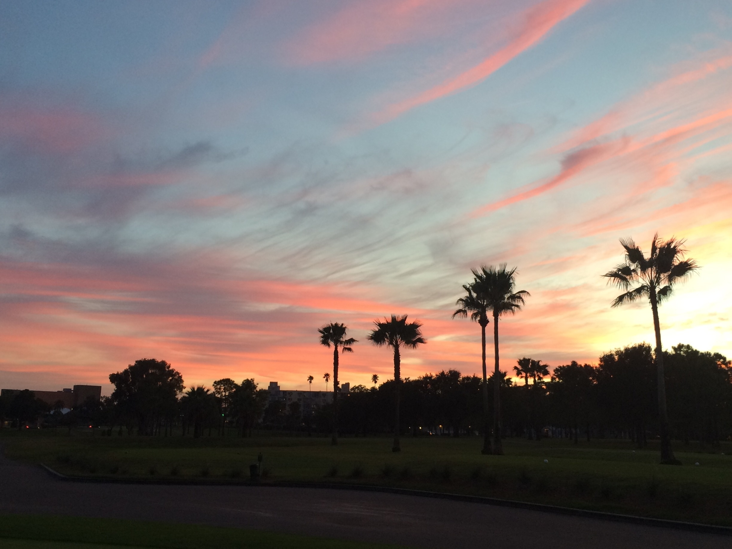 Clearwater Country Club, Clearwater, Florida, USA