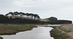Budleigh Salterton Plajı