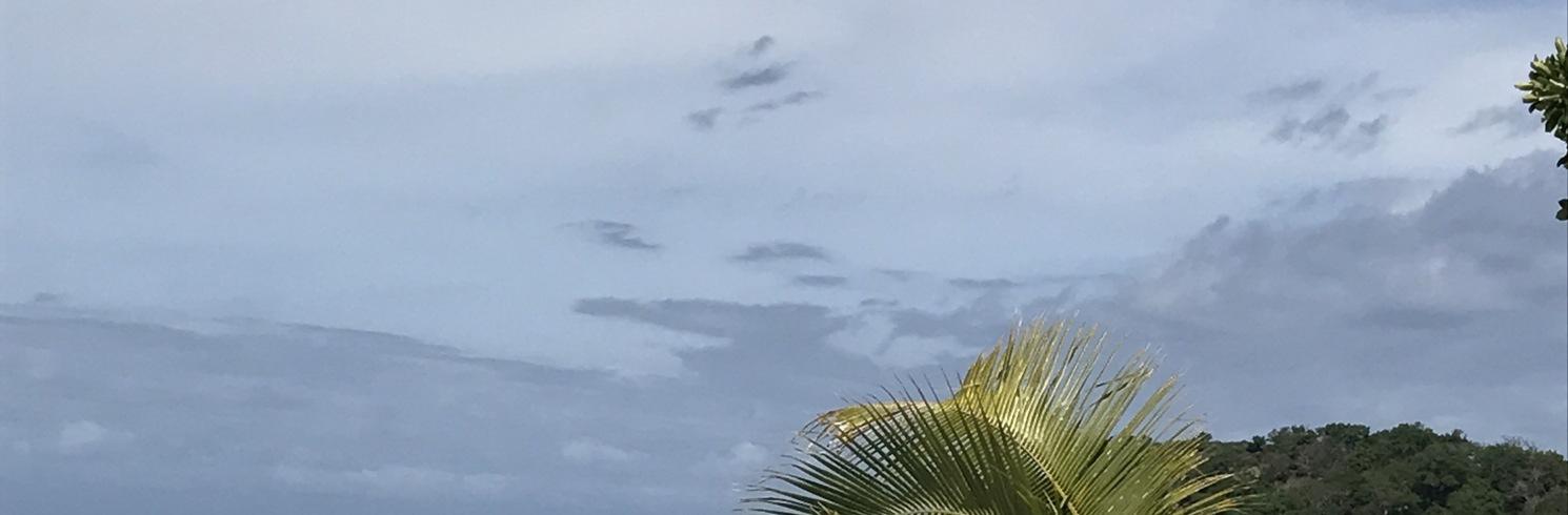 Martintar, Fiji