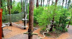 กิจกรรมผจญภัย TreeTop Adventure Park Central Coast