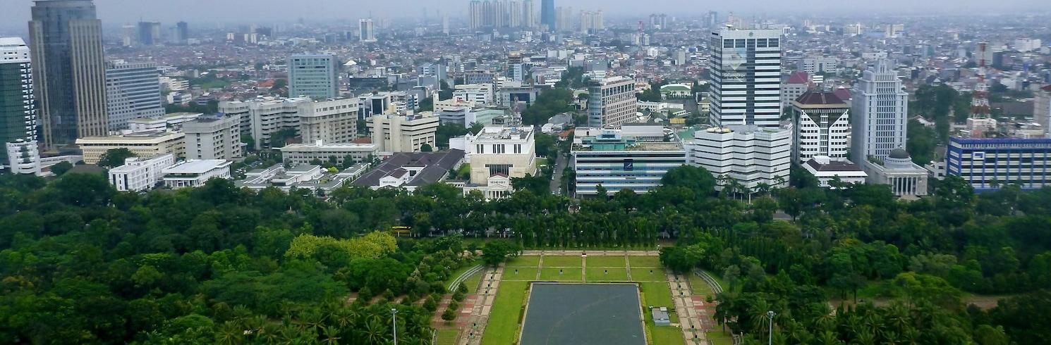 Gambir, Indonézia