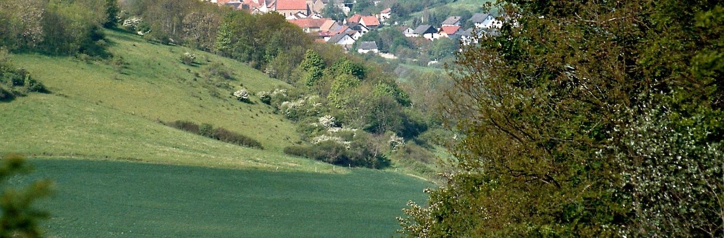 Obermošelis, Vokietija