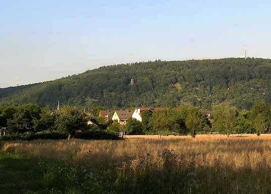 Ettlingenweier, Germany