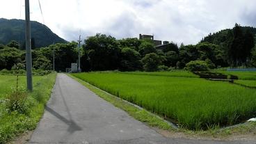 Yonezawa/