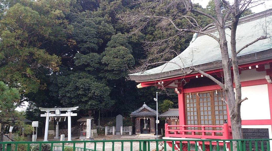 浅間神社(松戸)