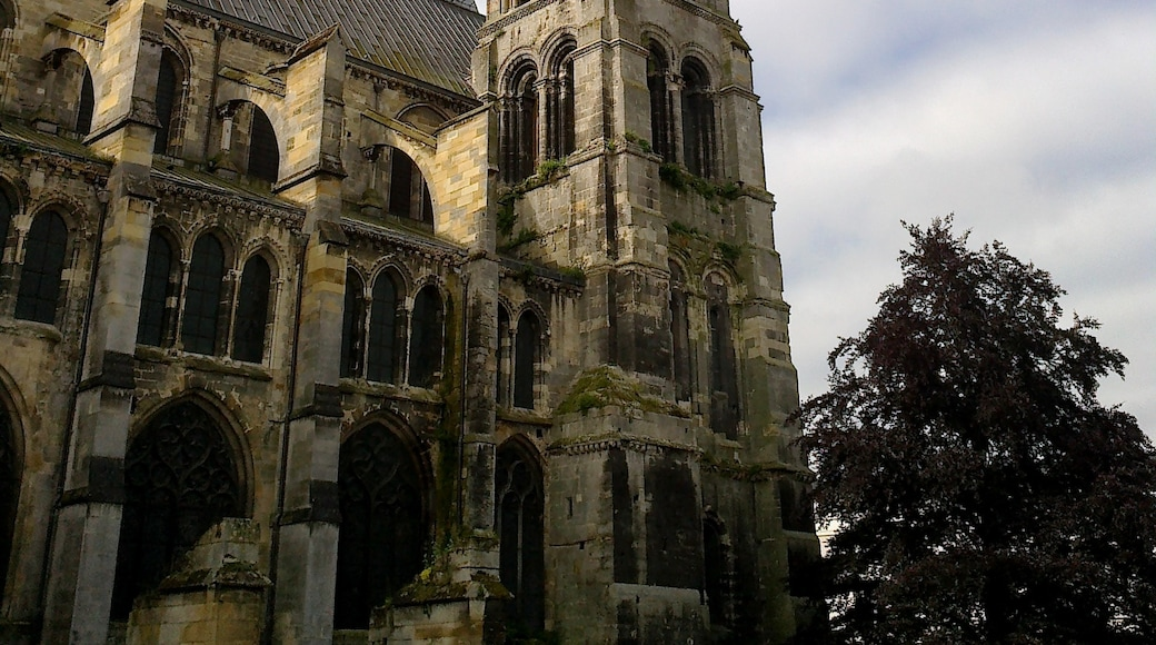 """Photo """"Chalons-en-Champagne"""" by rene boulay (CC BY-SA) / Cropped from original"""