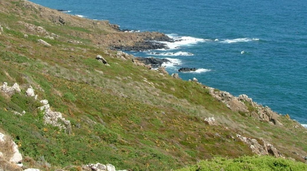"""Photo """"Coverack"""" by Nigel Homer (CC BY-SA) / Cropped from original"""
