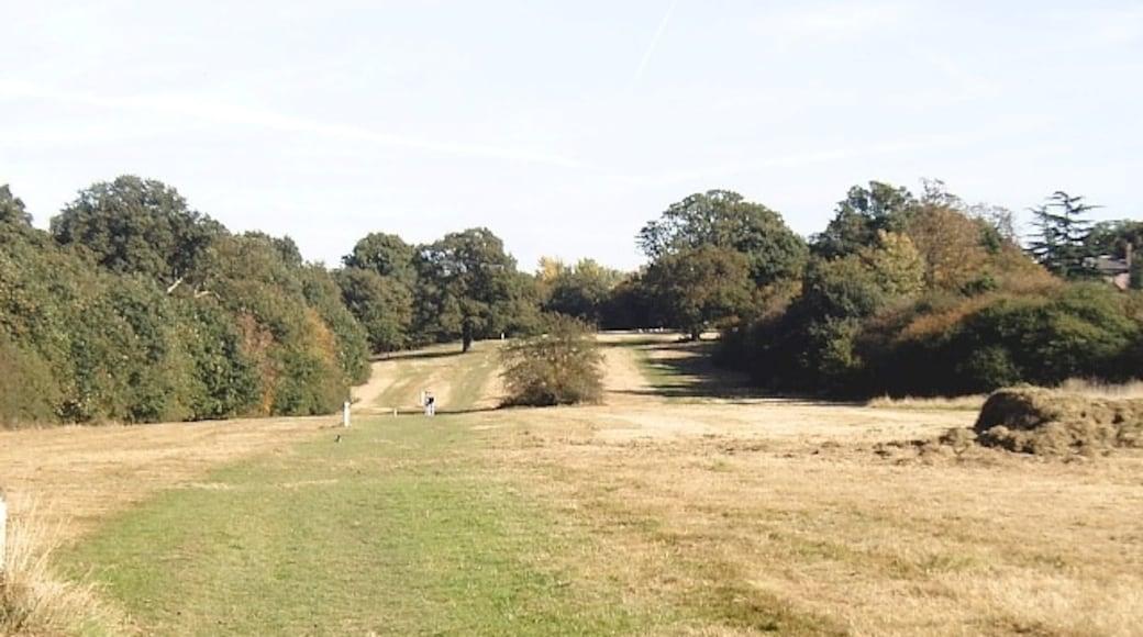 Foto 'Buckhurst Hill' van David Kemp (CC BY-SA) / bijgesneden versie van origineel