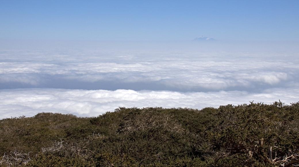 """Foto """"Puntallana"""" de Tony Hisgett (CC BY) / Recortada de la original"""