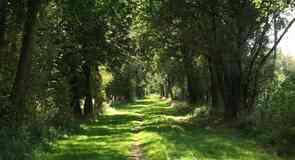 كويكبرن