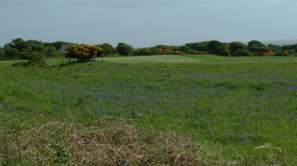 """Photo """"Kenfig"""" by Chris Shaw (CC BY-SA) / Cropped from original"""