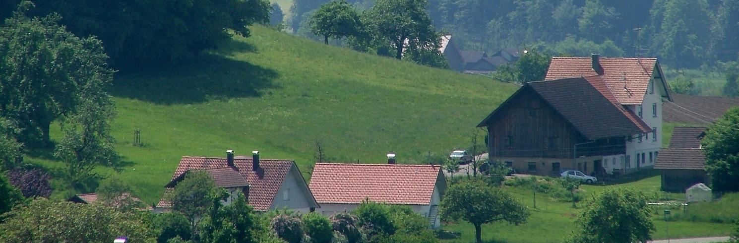 Bodnegg, Nemecko