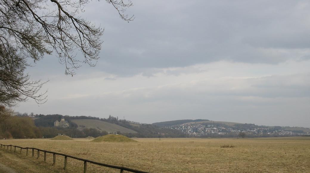 """""""Schweinfurt""""-foto av Plozessor (page does not exist) (CC BY-SA) / Urklipp från original"""