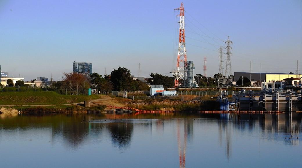 """Photo """"Hiratsuka"""" by laggnugg (CC BY-SA) / Cropped from original"""
